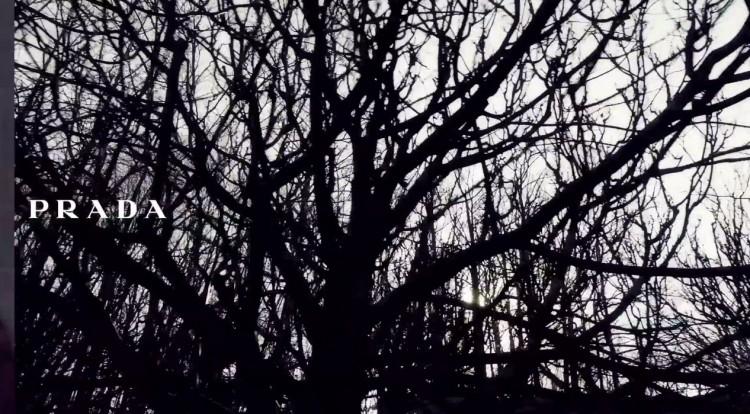 Prada Fall Winter 2014 Video Steven Meisel 05