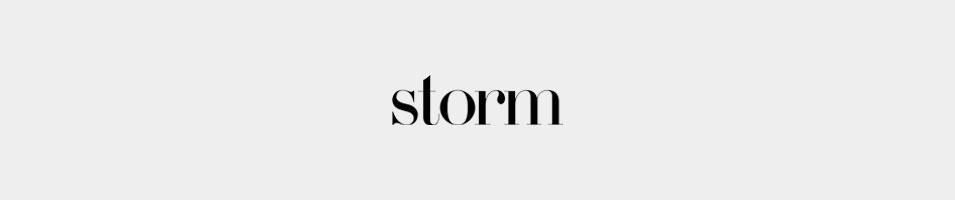 storm models
