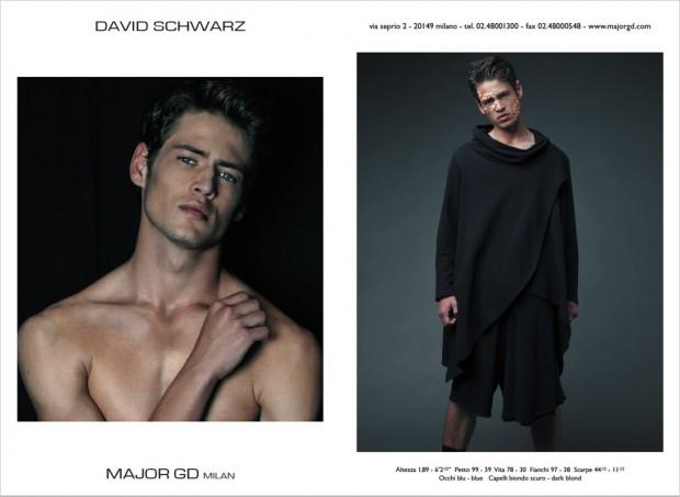 DAVID-SCHWARZ-(2)