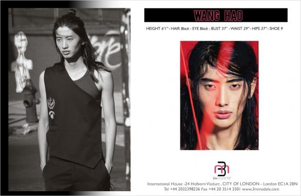 Wang-Hao