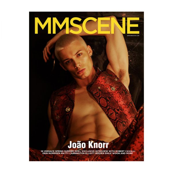 MMSCENE ISSUE 29